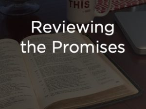 Reviewing the Promises