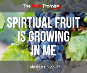 A group of grapes with the words - Spiritual Fruit is Growing in Me
