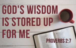 God's Wisdom is Stored Up for Me - Proverbs 2:6-7