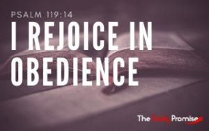 I Rejoice in Obeying God's Word - Psalm 119:14
