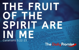 The Fruit of the Spirit Are in Me - Galatians 5:22-23