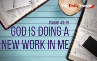 God is Doing a New Work in Me - Isaiah 43:19