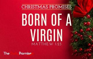 Born of a Virgin - Matthew 1:23
