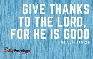 Give Thanks to the Lord, for He is Good - Psalm 118:29
