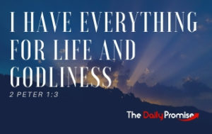 I Have Everything I Need for Life and Godliness - 2 Peter 1:3