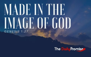 Made in His Image - Genesis 1:27
