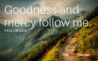Goodness and Mercy Follow Me - Psalm 23:6