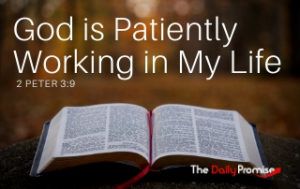 God is Patiently Working in Me - 2 Peter 3:9