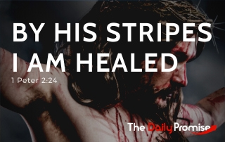 By His Stripes We Are Healed - 1 Peter 2:24