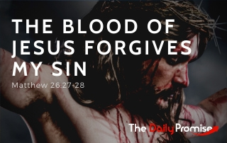 The Blood of Jesus Forgives My Sin - Matthew 26:27-28