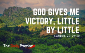 God Gives Me Victory, Little by Little - Exodus 23:29-30