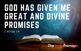 God Has Given Me Great and Divine Promises - 2 Peter 1:4
