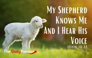 My Shepherd Knows Me, and I Hear HIs Voice - Joh 10:27