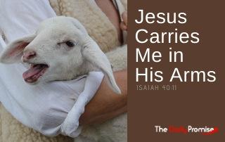 Jesus Carries Me in His Arms - Isaiah 40:11