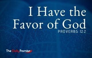 I Have the Favor of God - Proverbs 12:2