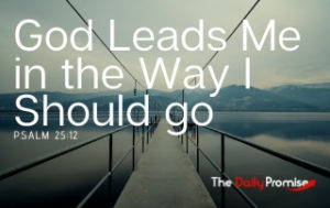 God Leads Me in the Way I Should Go - Psalm 25:12