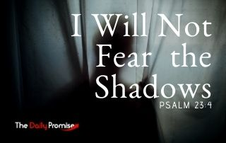 I Will Not Fear the Shadows - Psalm 23:4