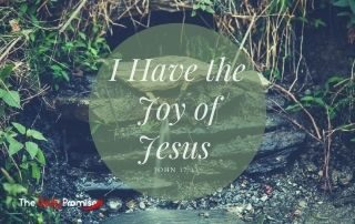 I have the Joy of Jesus - John 17:13