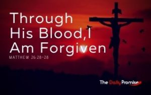 Through His Blood, I Am Forgiven - Matthew 26:27-28