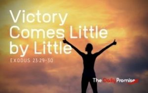 Victory Comes Little by Little - Exodus 23:29-30