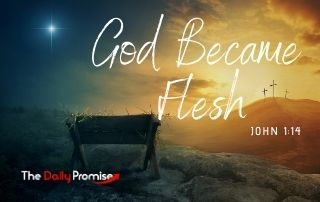 God Became Flesh - John 1:14