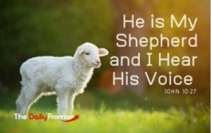 He is My Shepherd and I Hear His Voice - John 10:27