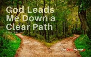 God Leads Me Down a Clear Path - Proverbs 3:6