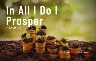 In all I do I Prosper - Psalm 1:3