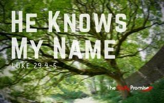 He Knows My Name - Luke 19:4-5