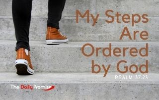 My Steps Are Ordered by God - Psalm 37:23