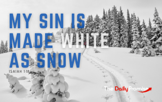My Sin is Made White as Snow - Isaiah 1:18