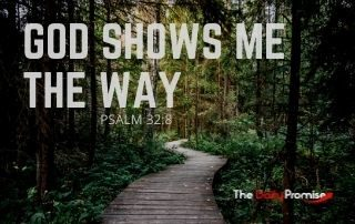God Shows Me the Way - Psalm 32:8