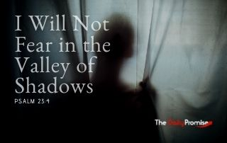 I Will Not Fear in the Valley of the Shadows - Psalm 23:4