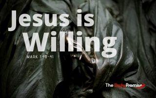 Jesus is Willing - Mark 1:40-41