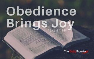 Obedience Brings Joy - Psalm 119:14
