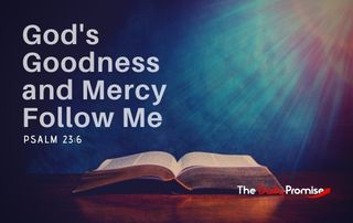 God's Goodness and Mercy Follow Me - Psalm 23:6