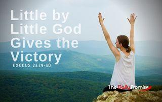 Little by Little - Exodus 23:29-30